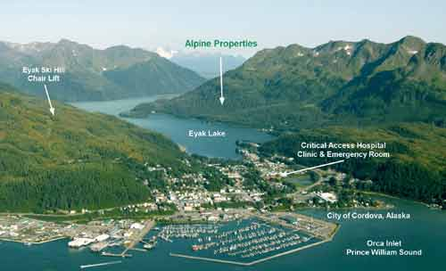 Aerial View of Cordova Alaska with Harbor and City